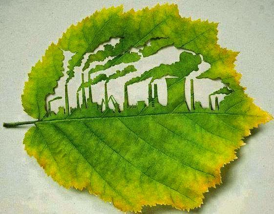 Leaf art with valuable message.