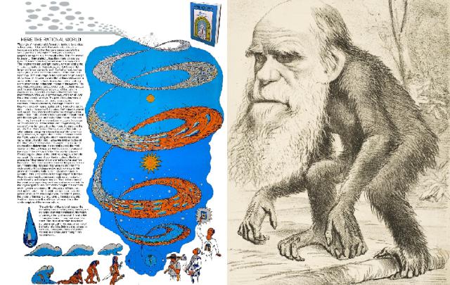 Inglês-Darwin.png