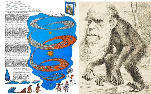o-porque-a-teoria-darwinista-da-evolucao-nao-faz-sentido